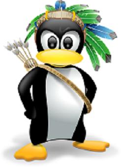 pinguino-flechas